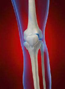 Реактивен артрит при деца : причини, симптоми, диагноза, лечение | Компетентно за здравето на Крем Move&Flex в България